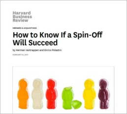 How to know if a spinn-off will succeed